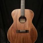 guitar-stock-jericho-series