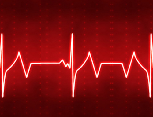 The Heartbeat